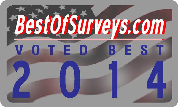 Best of Surveys 2014