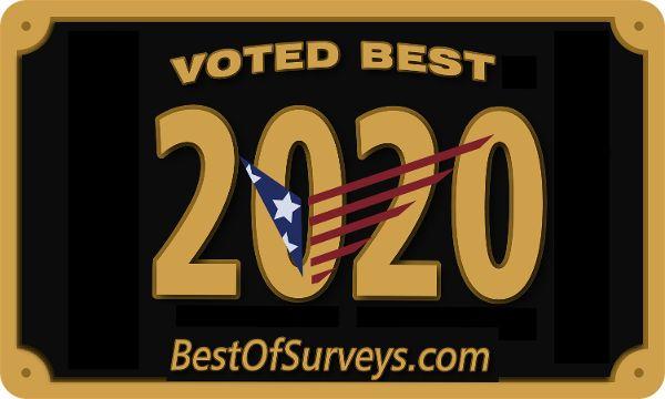 Best of Surveys 2020