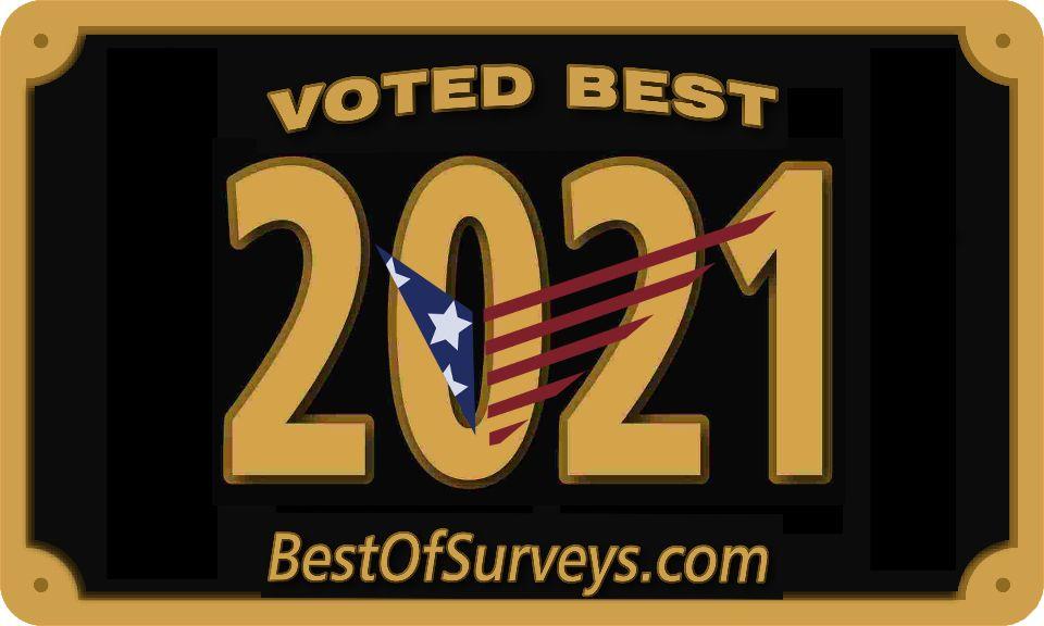 Best of Surveys 2021
